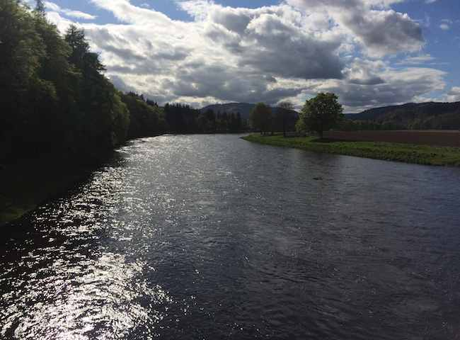 Famous River Tay Salmon Beats