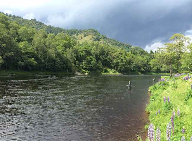 Dunkeld Salmon Fishing Hospitality