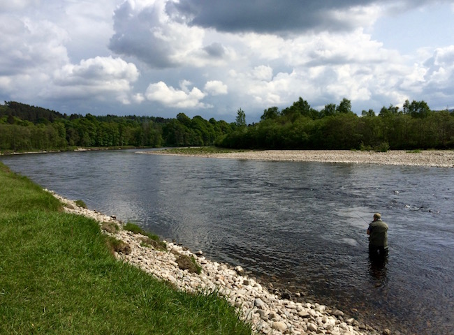 Scottish Salmon Fishing Brilliance
