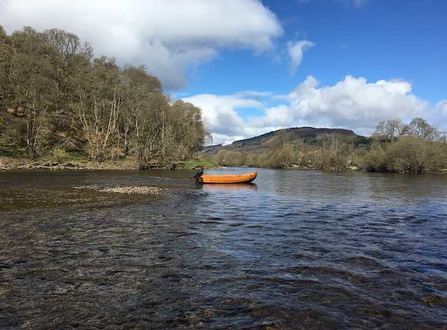 Spring Beauty On The River Tay