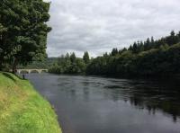 Salmon Fishing Knowledge