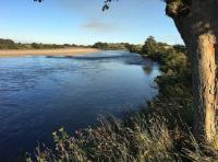 Salmon Fishing Events On The Tay
