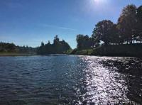 The Scottish River Environment