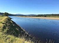 The Magnificent Scottish Salmon Rivers