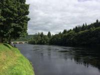 Catch A River Tay Salmon