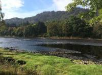 The Perfect Salmon Pools Of The River Tay