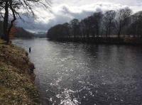 The Perfect Scottish Riverbanks