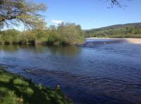 Salmon Fishing Pools On The River Tay