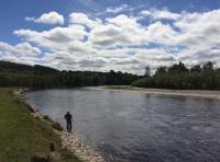Salmon Fishing Instruction In Scotland