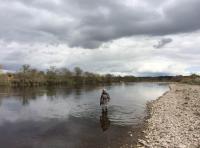 Book A Salmon Fishing Event In Scotland