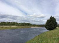 Perthshire's Natural Riverbank Beauty