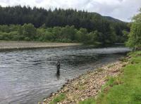 Fly Fishing On Scottish Salmon Rivers