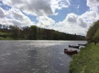 Fishing From The Boat On The River Tay