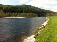 Fishing For Salmon On The River Tummel