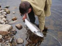 Salmon Fishing Guided Events In Scotland