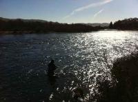 Fishing Entertainment In Scotland