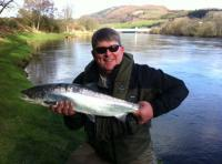 Spring Salmon Fishing On The River Tay