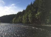 Treat Yourself To Some River Therapy