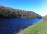 Perfect Spring Salmon Fishing Days