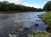 Salmon Fishing Lessons In Scotland
