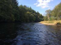 The Salmon Rivers Of Scotland