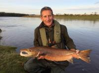 Autumn Salmon From The River Tay