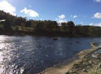 River Tay Salmon Fishing Guide