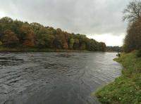 Fishing On The Lower River Tay