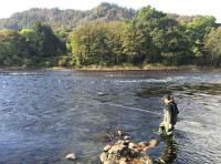 Fishing In Scotland For Salmon