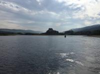 Perfect Salmon Fishing Water On The River Tay