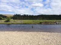 Fly Fishing Tuition In Scotland