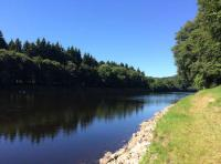 The Riverbanks Of Scotland In Summer