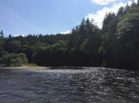 Dunkeld Salmon Fishing