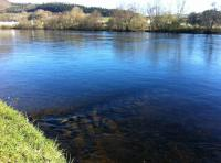 The Salmon Fishing Croy