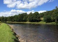 Fishing The Scottish Salmon Rivers In Summer