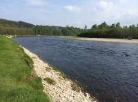 The Perfect Salmon Fly Fishing Pool