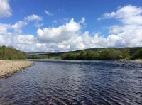 River Fishing For Salmon In Scotland