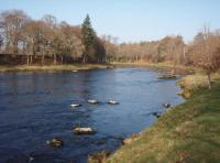 Salmon Fishing Tuition On The River Dee