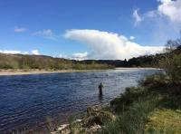 The Beauty Of Spring Salmon Fishing