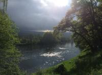The Attraction Of Salmon Fishing