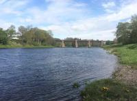 River Tay Corporate Salmon Fishing