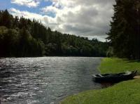 Salmon Fishing On The River Spey