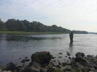 Corporate Salmon Fishing Trips