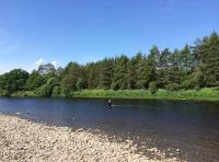 The Perfect Fly Fishing Stream