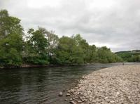 Catching Salmon On The Fly In Scotland