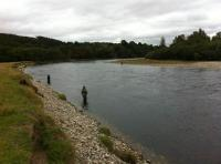 Searching For Scottish Salmon