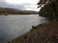 The River Tay in Perthshire Scotland