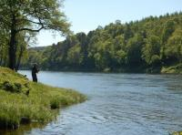Salmon Fishing Events Scotland