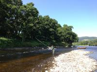 Speycasting Tuition River Tay