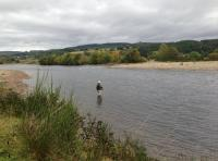 Salmon Fishing Hospitality Events